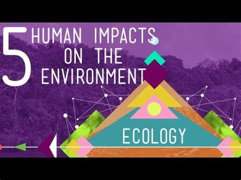 5 Human Impacts On The Environment: Crash Course Ecology