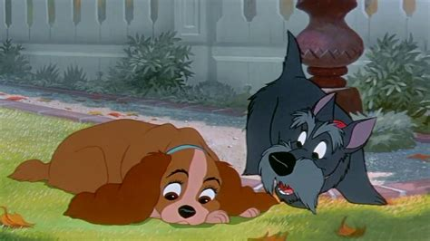 Download Lady and the Tramp (1955) YIFY Torrent for 720p