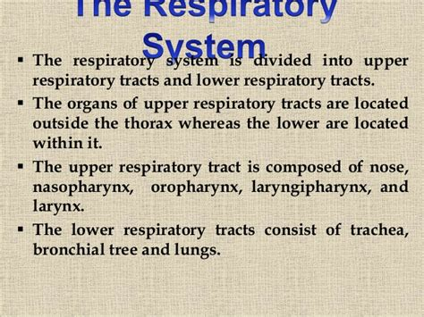 Johny's A&P structure and function of respiratory system