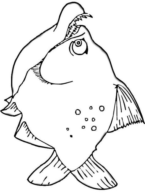 Piranha Coloring Page - Coloring Home
