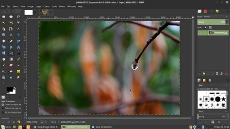 Top 6 Adobe Photo Editor Alternative You Will Never Miss