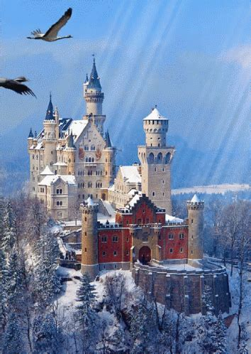Geese Castle GIF - Geese Castle Winter - Discover & Share GIFs