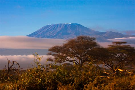 10 photos from Amboseli National Park - Africa Geographic