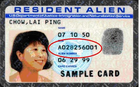 You should probably know this about Resident Alien Card